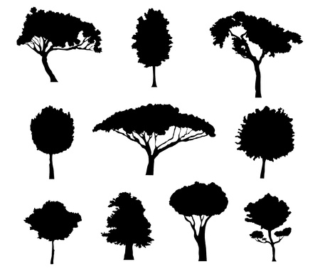Set of tree silhouettes for ecology design Vector