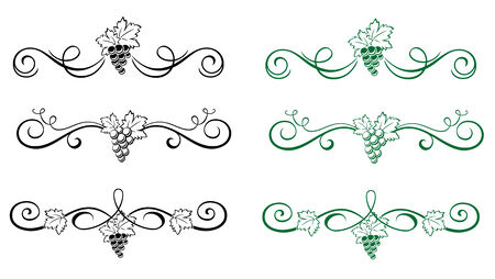 Set of beautiful floral elements with grape isolated on white Vector