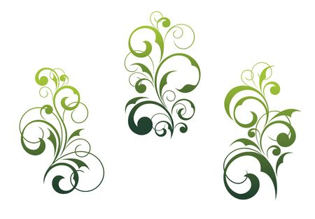 motif: Set of beautiful floral elements and motifs isolated on white Illustration