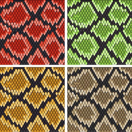 serpiente caricatura: Conjunto de patrones de piel de serpiente de dise�o o recargado