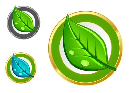 Green leaf emblems and icons set for ecology design Vector