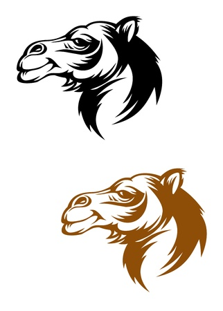 camels: Camel head in cartoon style for mascot or tattoo design