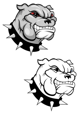 pedigreed: Bulldog mascot for design isolated on white