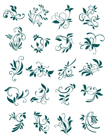 scroll banner: Floral patterns and decorations isolated on white for design