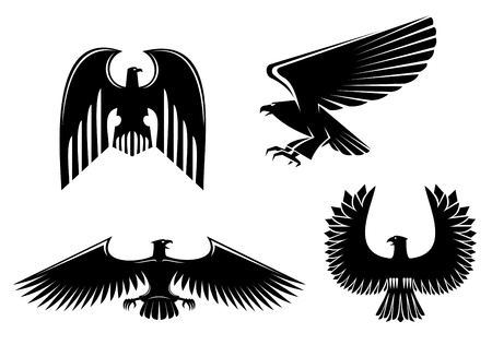 adler silhouette: Eagle Symbol auf wei�em f�r Design isoliert Illustration