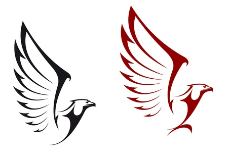 halcones: Eagles aisladas sobre fondo blanco para el dise�o de la mascota o emblema