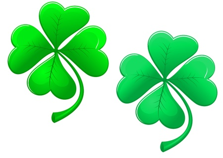 Green lucky clover isolated on white background for ecology design Vector