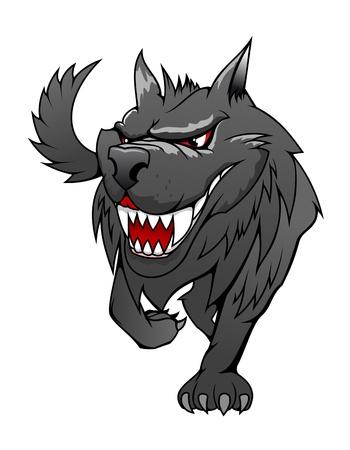 lobo: Salvaje peligro del lobo gris en el estilo de dibujos animados aislado en blanco