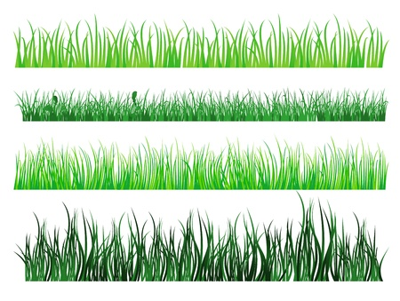 Green grass and field elements isolated on white background Illustration