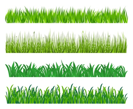 hedges: Green grass and field elements isolated on white background Illustration