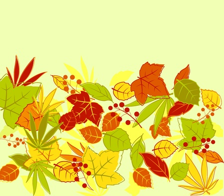 deciduous: Autumn colorful leaves background for seasonal design