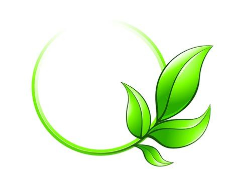 녹색 흰색 배경에 고립 된 생태 상징으로 나뭇잎 프레임