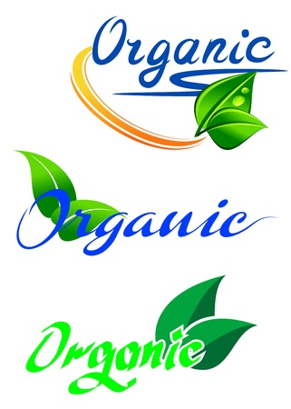 Ecology and nature symbols for food and environment design Vector