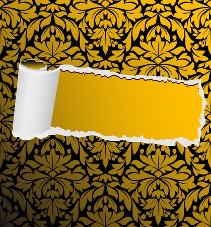 tearing: Damask seamless background with torn element for design