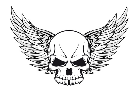skeleton skull: Human skull with wings for tattoo design