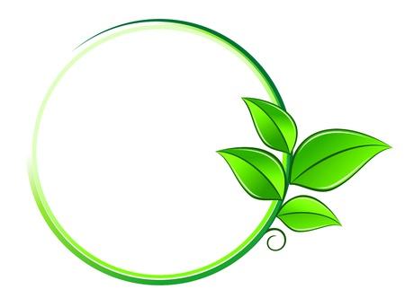 Foglie verdi su telaio come un ambiente o un simbolo ecologia