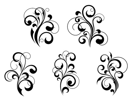 Set of beautiful floral elements and motifs isolated on white background Vector