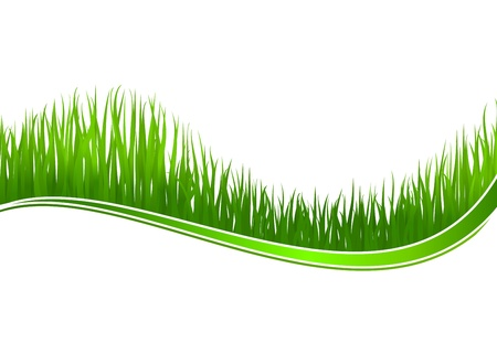 Green grass wave for spring or nature design Vector