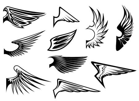 wings icon: Set di ali di uccello per la progettazione di araldica o emblema