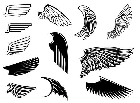 alas de angel: Conjunto de las alas del pájaro de la heráldica de diseño Vectores