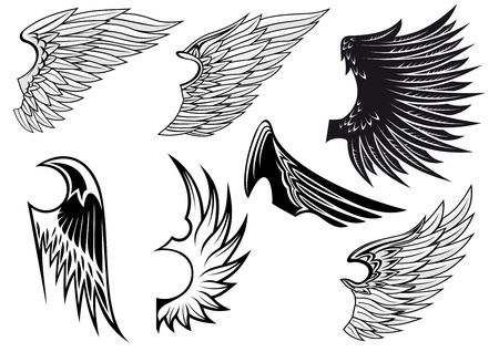 wings isolated: Set of bird wings for heraldry design isolated on white background Illustration