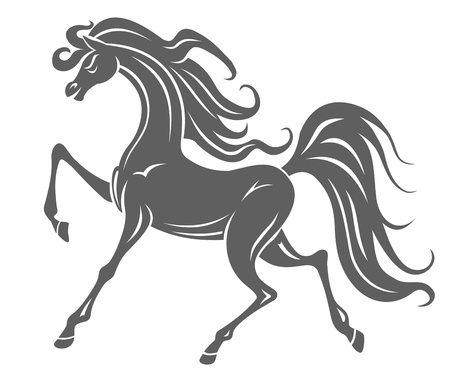 domestic horses: Silhouette of gray horse foal for equestrian design Illustration