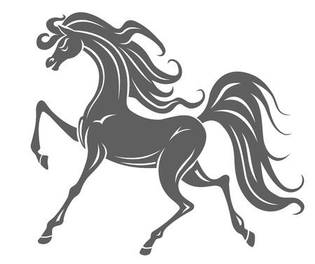 arabian horse: Silhouette of gray horse foal for equestrian design Illustration