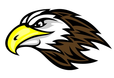 adler silhouette: Cartoon Falkenkopf für Maskottchen oder Tattoo-Design Illustration