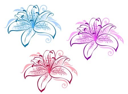 Beautiful lily flowers set for design and ornate Vector