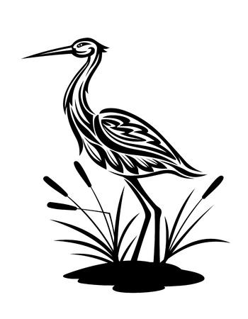 crane bird: Heron bird ion the bog landscape for environment design