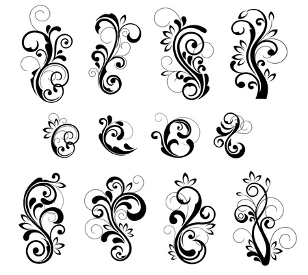 Floral patterns for design isolated on white Stock Vector - 12792761