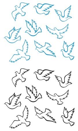 Las palomas y las aves palomas s�mbolos de la paz o el concepto de dise�o de la boda Foto de archivo - 13194224