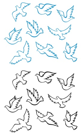 Pigeons and doves birds symbols for peace or wedding concept design Vector