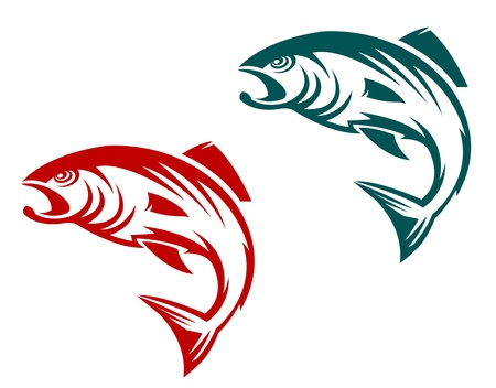 trout fishing: Salmon fish in two variations for fishing sports mascot
