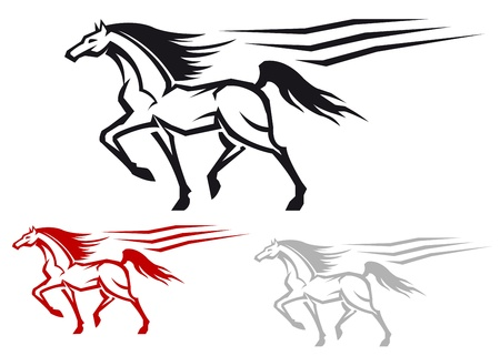 equine: Racing arabian stallion isolated on white background for equestrian design Illustration