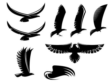 silhouette aquila: Set di araldica uccelli neri per la progettazione di tatuaggio o mascotte