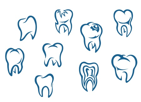 tooth pain: Human teeth set isolated on white background for dental medicine background
