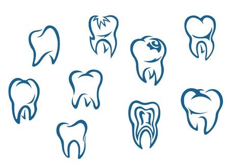 Los dientes humanos establece aislado sobre fondo blanco para el fondo la medicina dental