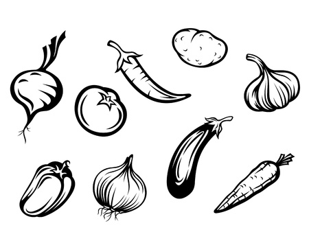 berenjena: Juego de verduras frescas aisladas sobre fondo blanco