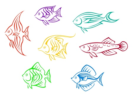Set of seven colorful aquarium fishes isolated on white background