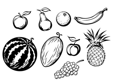 pineapples: Set of fresh fruits isolated on white backgrounds for menu or market design Illustration
