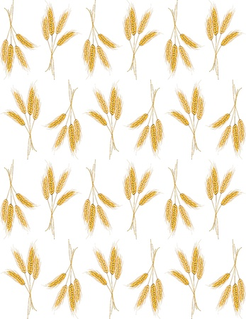 Seamless background with wheat ears for wallpaper design Vector