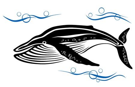 ballena azul: Gran ballena negro en el agua del océano para el diseño del medio ambiente