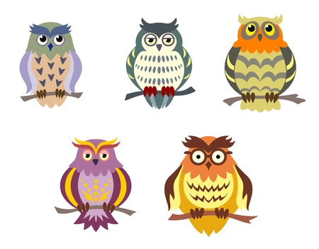 hoot: Color cartoon owls set in doodle style for funny design
