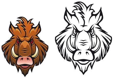 wild hair: Capo del cinghiale arrabbiato per la progettazione mascotte sportiva di colore nero e le variazioni Vettoriali