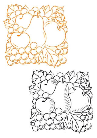 Set of fruits in retro style for embellishment design Vector
