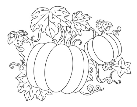 Pumpkins vegetables with leaves for thanksgiving or harvesting design Stock Vector - 15152953