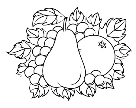 outline drawing: Fruits in retro style for embellish or thanksgiving holiday design