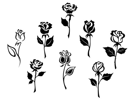 Beautiful roses silhouettes set for holiday gift design Vector