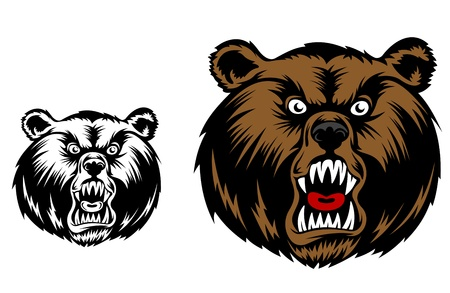 Head of angry bear for mascot design Vector